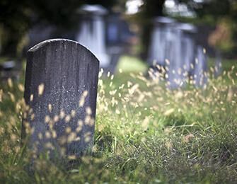 Ölüm Analizini Keşfet!